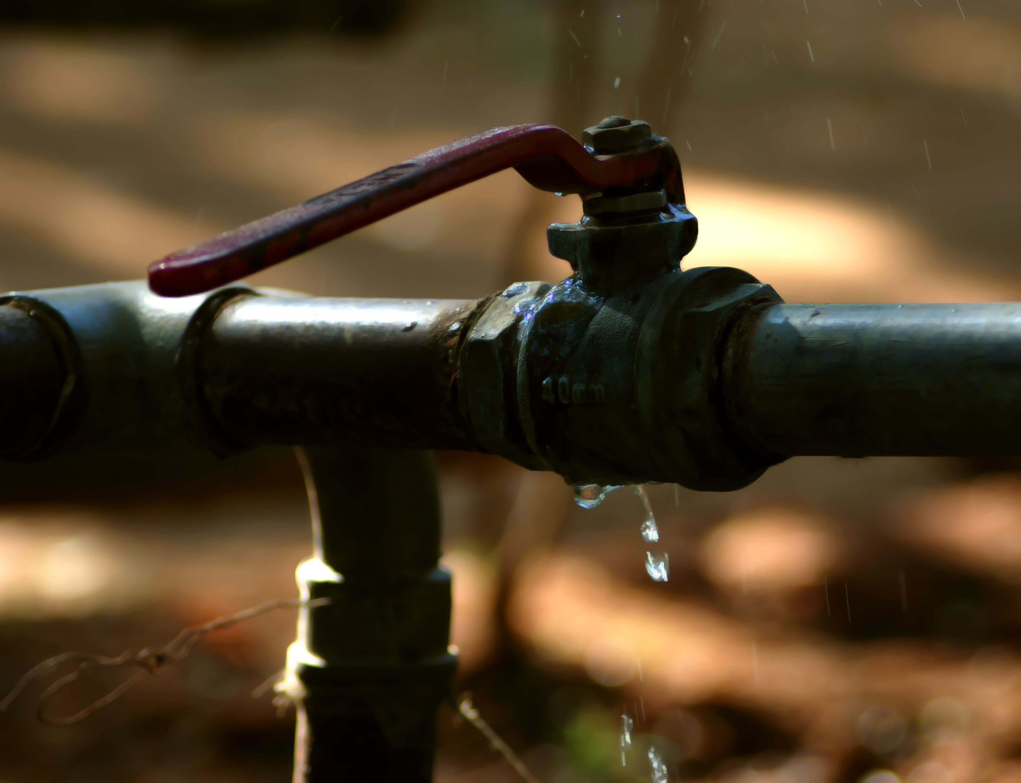 Zurn Celebrates World Plumbing Day | Water Quality Products