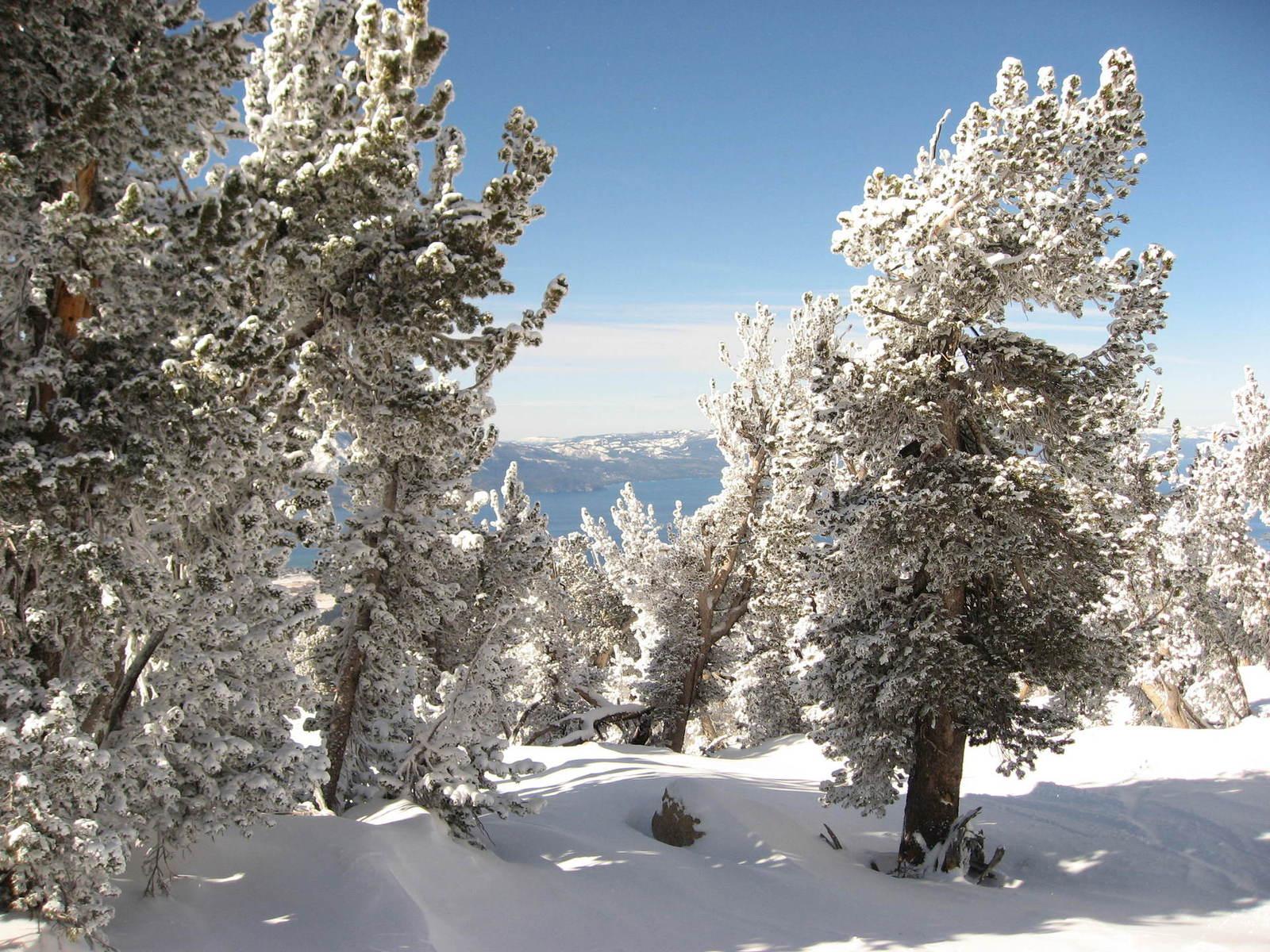 lake tahoe california drought snowpack measurement